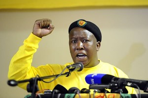 Julius Malema photo